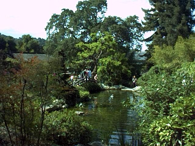Image or picture of Hakone Gardens, Santa Clara County
